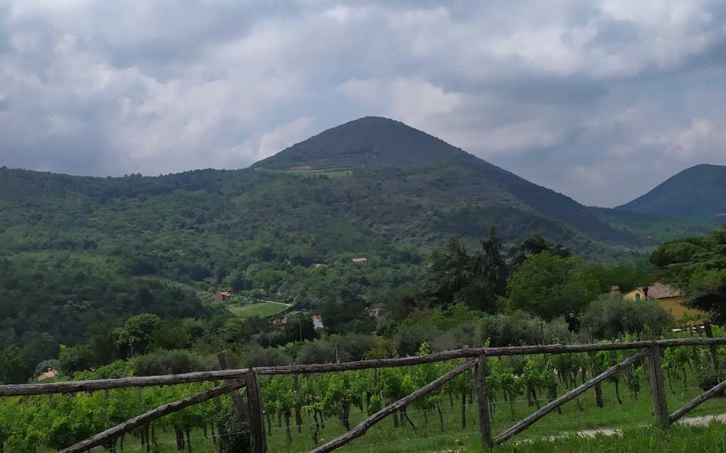 Vista panoramica dei Colli Euganei